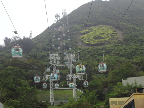 Ocean Park Hong Kong – the Theme Park in Hong Kong where you could see Dolphins